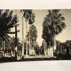 Postales: MELILLA. POSTAL NO.20, PARQUE HERNÁNDEZ. PASEO LATERAL. EDITA: FOTO IMPERIO (H.1960?). Lote 146288126