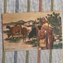 Postales: TARJETA POSTAL MULLOR BOIX HERMANOS - MELILLA - VAQUERO RIFEÑO. Lote 160716940