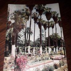 Cartes Postales: Nº 4927 POSTAL MELILLA JARDINES. Lote 182376613