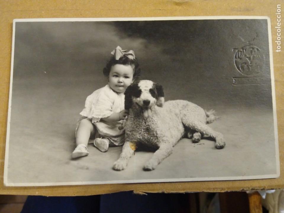 FOTOGRAFÍA FORMATO POSTAL, NIÑA CON PERRO. TRUCHAUD Y CANO. MELILLA. SIN CIRCULAR. (Postales - España - Melilla Antigua (hasta 1939))