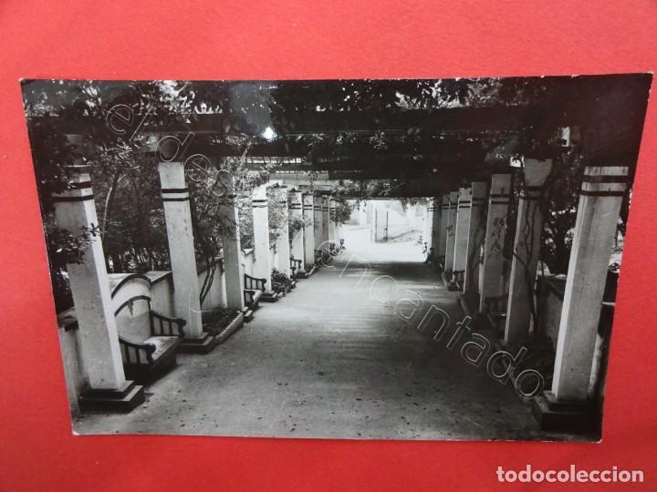 MELILLA. PASEO DEL PARQUE LOBERS (Postales - España - Melilla Moderna (desde 1940))