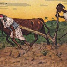 Cartes Postales: MELILLA MORO ARANDO. POSTAL ILUSTRADA POR D. MULLER. COLOREADA, SIN CIRCULAR. Lote 220976598