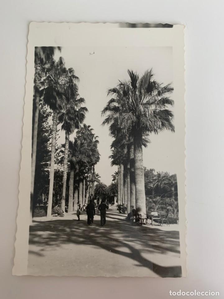 MELILLA - PARQUE HERNÁNDEZ - Nº 22 ED. RAFAEL BOIX (Postales - España - Melilla Moderna (desde 1940))
