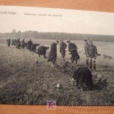 Postales: POSTAL DE LA ARMADA BELGA - EN LA FOTO GARABINIERS CREUSANT UNE TRANCHÉE - PRINCIPIOS SIGLO XX. Lote 16501820