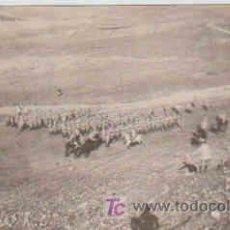 Postales: POSTAL MILITAR, ACADEMIA DE INFANTERIA DE TOLEDO CURSO 1913-14, DEWPUES DEL ATAQUE A LA LUNETA. Lote 7863236