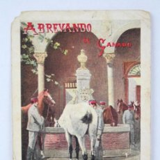 Postales: POSTAL ILUSTRADA - ABREVANDO EL GANADO. Nº 246 / 46 - ED. CALLEJA - CIRCULADA / SIN DIVIDIR, 1904. Lote 49302120
