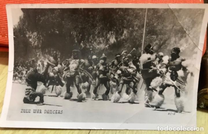 FOTOGRAFICA ZULU WAR DANCERS SURAFRICA GUERRA INGLATERRA ZULU TRIBU BATALLA AFRICANOS NATIVOS (Postales - Postales Temáticas - Militares)
