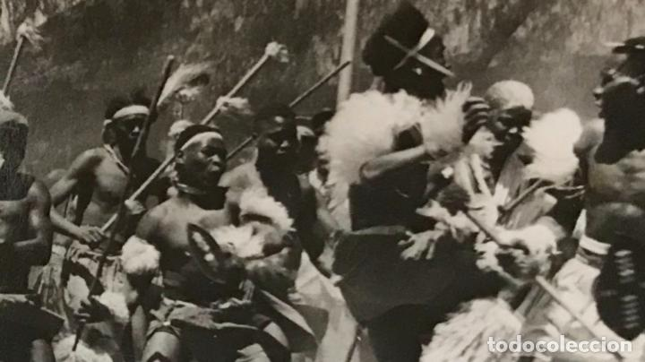 Postales: fotografica zulu war dancers surafrica guerra inglaterra zulu tribu batalla africanos nativos - Foto 4 - 168404096