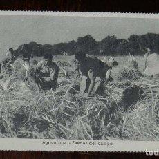 Postales: POSTAL DE AGRICULTURA, FAENAS DEL CAMPO. ED.VICESECRETARIA DE EDUCACION POPULAR, JOSE ANTONIO. FALAN. Lote 180930247