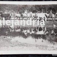 Postales: POSTAL FOTOGRAFICA - TETUAN - REGULARES - RECTORET 14X9CM - FECHADA 1914 - SELLO INTENDENCIA CEUTA. Lote 214526513