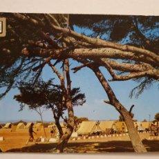 Postales: ALCALÁ DE CHIVERT / ALCALÀ DE XIVERT - CAMPAMENTO JAIME I DEL FRENTE DE JUVENTUDES - P47090. Lote 244952930