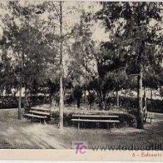 Postales - MURCIA. BALNEARIO DE FORTUNA. JARDINES. FOTOTIPIA THOMAS. SIN CIRCULAR - 6603332