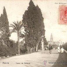 Postales: MURCIA.PASEO DEL MALECON. Lote 16093750