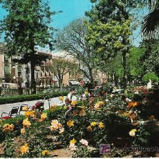 Postales: MURCIA - JARDINES DE FLORIDABLANCA -. Lote 17213518