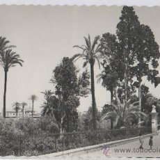 Postales: TARJETA POSTAL PASEO DEL MALECON MURCIA. Lote 18867976