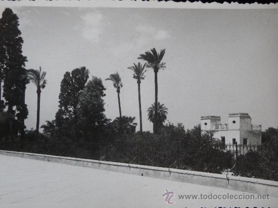 MURCIA - PASEO DEL MALECON (Postales - España - Murcia Moderna (desde 1.940))