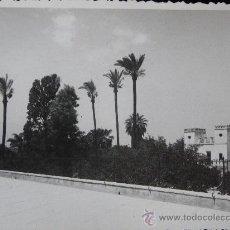 Postales: MURCIA - PASEO DEL MALECON . Lote 26806005