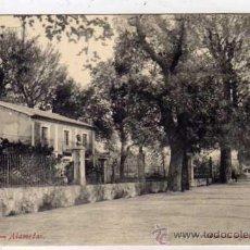 Postales: MURCIA. LORCA. ALAMEDAS. DIARIO DE AVISOS CORREDERA 35. SIN CIRCULAR.. Lote 26822306