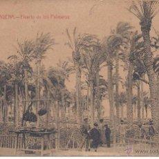 Postales: PS0763 CARTAGENA 'HUERTO DE LOS PALMEROS'. ED. J. CASAÚ. SIN CIRCULAR. Lote 39700339