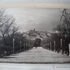 Postales: POSTAL DE JUMILLA. PASEO DE SAN ANTONIO. AÑOS 50-60. Lote 40626807