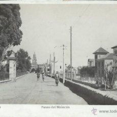 Postales: POSTAL. MURCIA. PASEO DEL MALECÓN. A. BELLIDO.. Lote 48659071