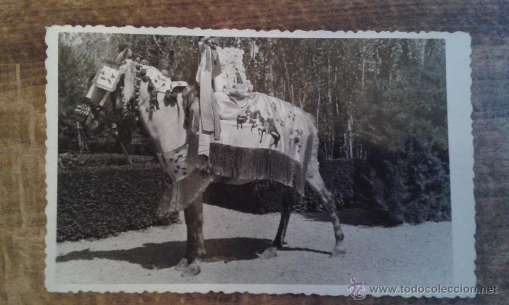ANTIGUA POSTAL CARAVACA MURCIA (Postales - España - Murcia Moderna (desde 1.940))