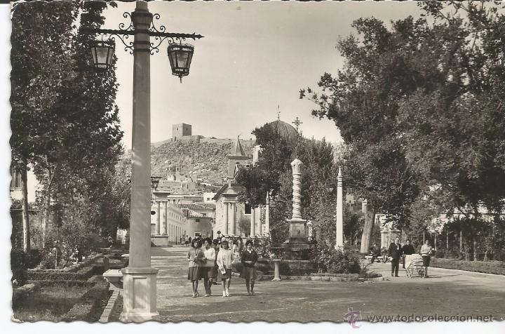 LORCA - ALAMEDA DE LA VICTORIA - Nº 39 EDICIONES ARRIBAS (Postales - España - Murcia Moderna (desde 1.940))