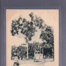 Postales: TARJETA POSTAL DE CARTAGENA - PLAZA DE LA CONSTITUCION. SABATER Y CIA.. Lote 56931741