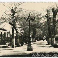Postales: MURCIA LORCA VISTA PARCIAL DE LA ALAMEDA EDICIONES ARRIBAS 15. ESCRITA. Lote 57357439