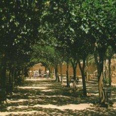 Postales: CALASPARRA MURCIA. SANTUARIO ESPERANZA, TERRAZA, 1982. Lote 112694759