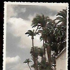 Cartes Postales: POSTAL COLOREADA * MURCIA , PAISAJE DE LA HUERTA *. Lote 127637563