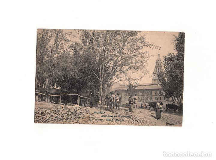 MURCIA.- MERCADO DE GANADOS. (Postales - España - Murcia Antigua (hasta 1.939))