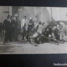 Postales: CARAVACA MURCIA MARCANDO UN CABALLO POSTAL FOTOGRAFICA HACIA 1920. Lote 190154511