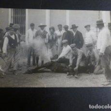 Postales: CARAVACA MURCIA MARCANDO UN CABALLO POSTAL FOTOGRAFICA HACIA 1920. Lote 190154552