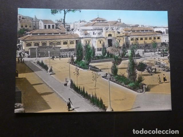 CIEZA MURCIA PLAZA ESPAÑA (Postales - España - Murcia Antigua (hasta 1.939))