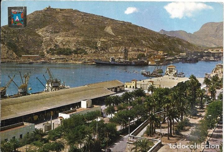 == P246 - POSTAL - CARTAGENA - VISTA PARCIAL DEL PUERTO (Postales - España - Murcia Moderna (desde 1.940))