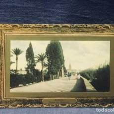 Postales: POSTAL COLOREADA MURCIA PASEO DEL MALECON EDICION SUCESORES DE NOGUES MARCO DORADO. Lote 193650922