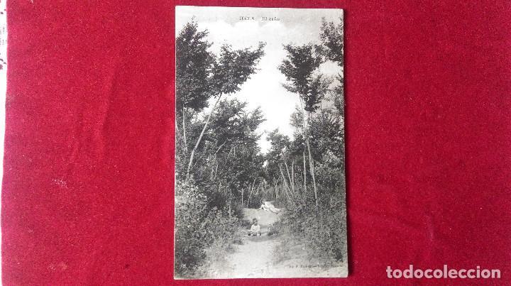 Postales: W.- 31.- LOTE DE - 2 - POSTALES DE -- YECLA -- EL EAÑO - Y VISTA GENERAL , VER FOTOS DE AMBAS - Foto 3 - 194671750