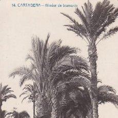 Postales: CARTAGENA HILADOR DE BRAMANTE. EDICION UNDUSTRIAL FOTOGRAFICA Nº14. ESCRITA. Lote 205847185