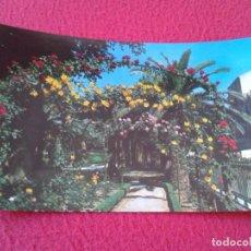 Postales: POST CARD KARTE CARTE POSTALE 2005 MURCIA JARDÍN DE FLORIDABLANCA DETALLE GARDENS FLORES FLOWERS ETC. Lote 228419685