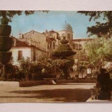Postales: YECLA - JARDÍN - FOTO TANI - P50374. Lote 257351130
