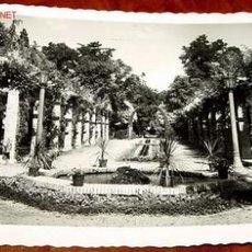 Postales: ANTIGUA FOTO POSTAL DE PAMPLONA - JARDINES DE LA TACONERA - ARRIBAS. Lote 693581
