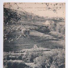 Postales: POSTAL DE ELIZONDO Nº 12, ALREDEDORES DE ELIZONDO, FOTOGRAFIA EN BLANCO Y NEGRO. Lote 34638531