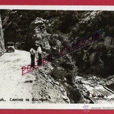 Postales: POSTAL NAVARRA , ISABA , CAMINO DE BELAGUA , ORIGINAL , P81689. Lote 49577528
