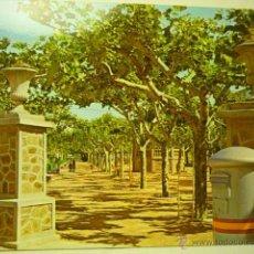 Cartes Postales: POSTAL CITRUENIGO .-PASEO AV.RUBIO. Lote 51545210