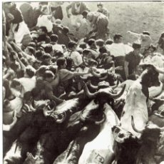 Postales: PS5044 PAMPLONA 'ENCIERRO DE LOS TOROS'. CINE-FOTO. 1951. Lote 45923937