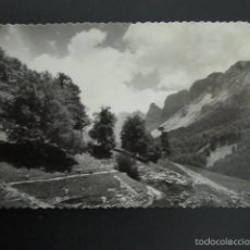Postales: POSTAL NAVARRA. VALLE DE ZURIZA. ISABA. . Lote 56852421