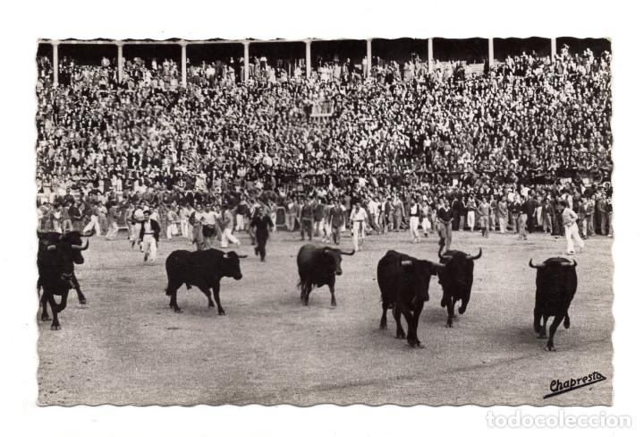 PAMPLONA.- LOS TOROS EN LA PLAZA FASE FINAL - ED. GARCÍA GARRABELLA. FOTO CHAPRESTO (Postales - España - Navarra Antigua (hasta 1.939))