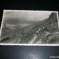 Postales: VERA DE BIDASOA NAVARRA MONTE LARUN SUMINISTRO DE ACEMILAS AL FONDO FUENTERRABIA. Lote 146983226