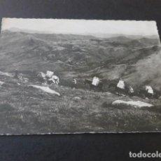 Postales: VERA DE BIDASOA NAVARRA ALTO DE LARUN. Lote 190355941